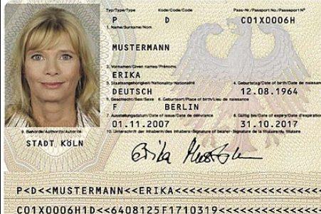 tool fake edit passport